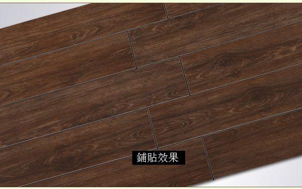 LOLA 樓蘭 – 皇庭雪橡 木紋磚 D610099