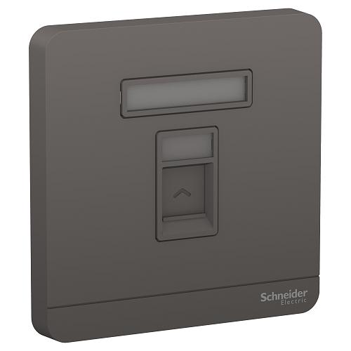 Schneider 施耐德 – 單位RJ45八線5e類數據插座,Keystone面板備防塵活門 E8331RJS5_DG_C5