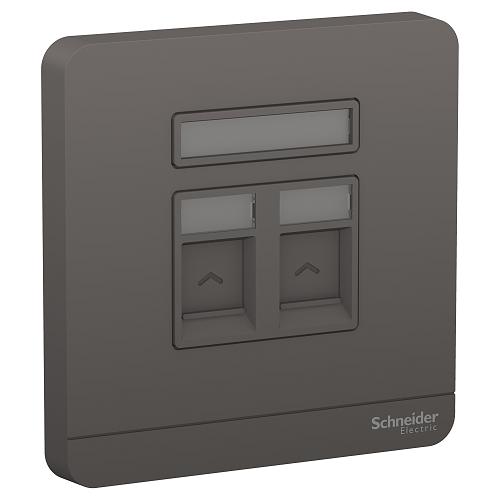 Schneider 施耐德 – 雙位RJ45數據插座,Keystone面板備防塵活門(不連模塊) E8332RJS_DG_C5